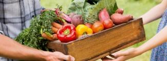 jardinvivant.commercialisation.be